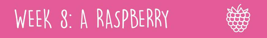 First Trimester Week 8:A raspberry