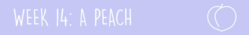 Second Trimester Week 14:A peach
