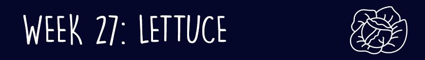 Second Trimester Week 27: Lettuce